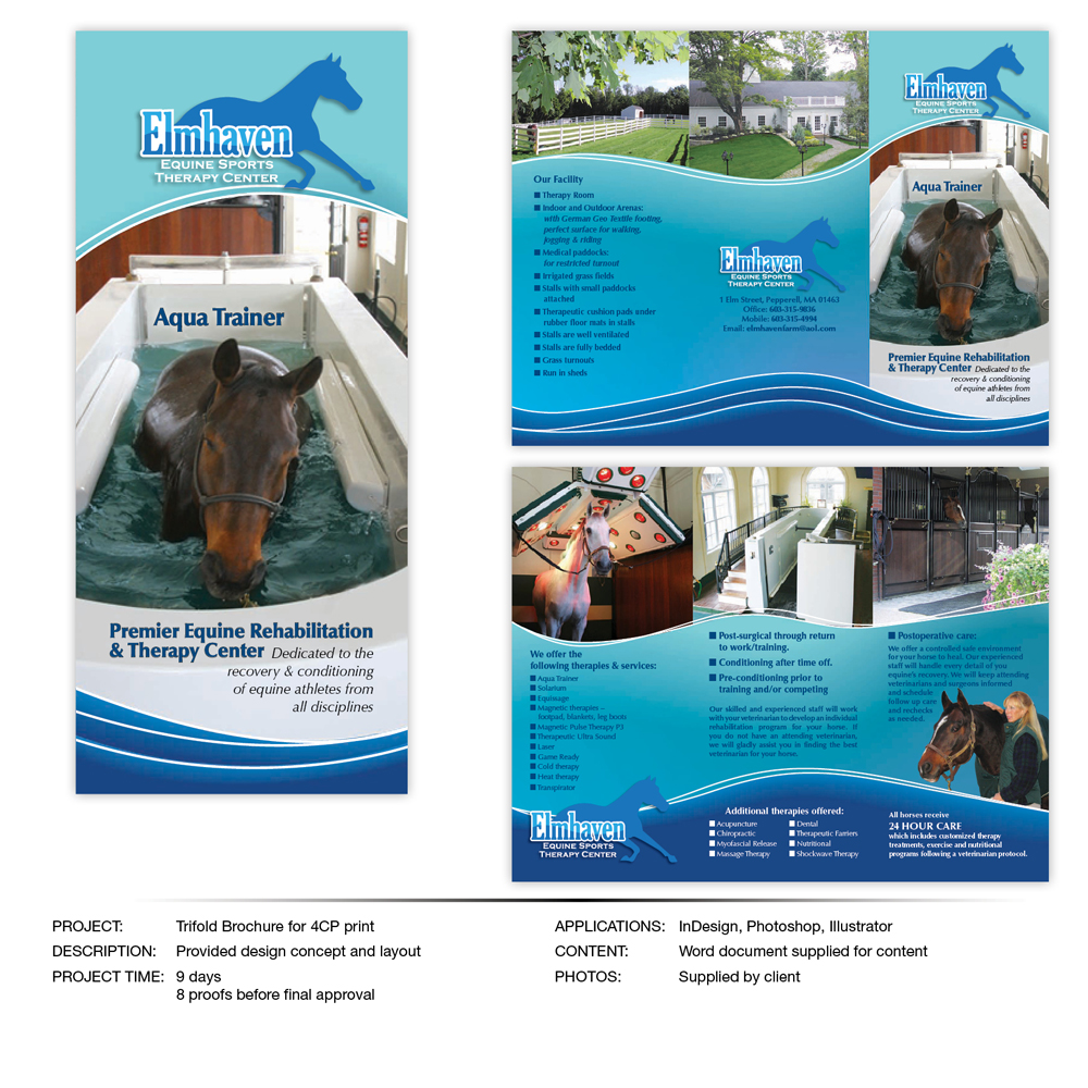 Brochure | Danfree Design
